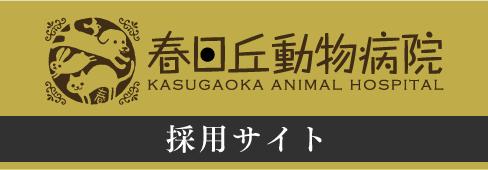 茨木市春日丘動物病院求人サイト