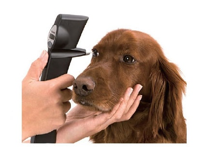 動物用眼圧測定器